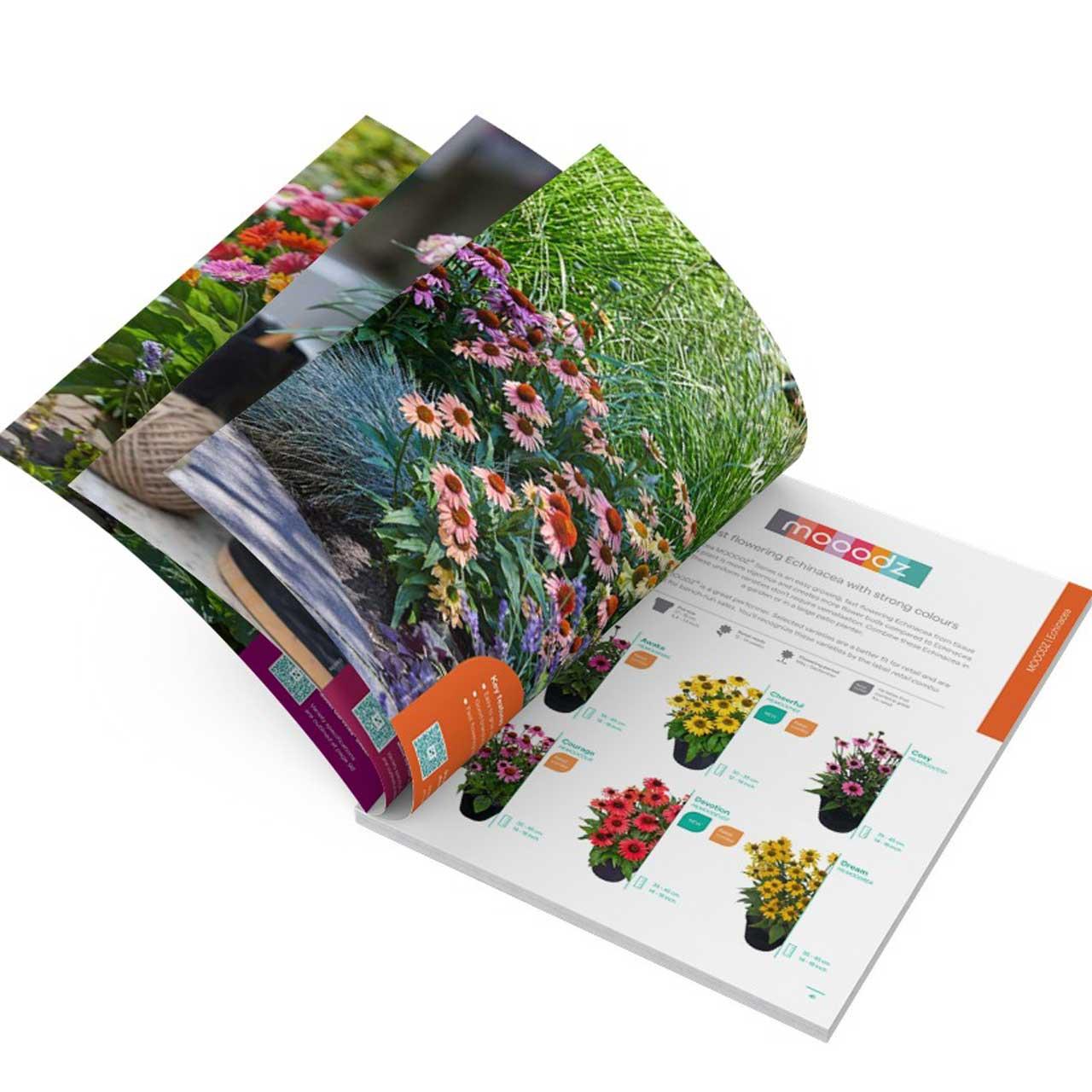 HilverdaFlorist-Pot-and-Garden-Catalogue-2022